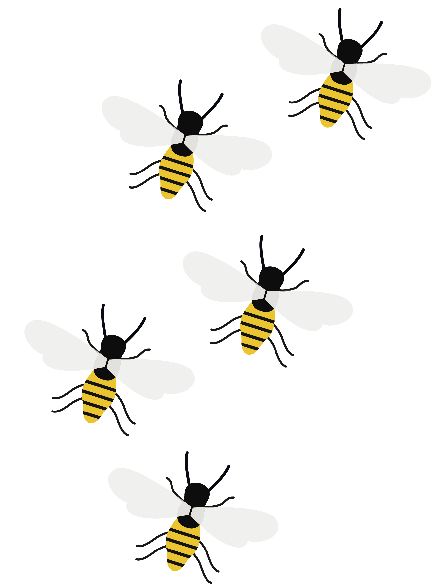 https://www.membership-matters.co.uk/wp-content/uploads/2018/01/Bees-1.png