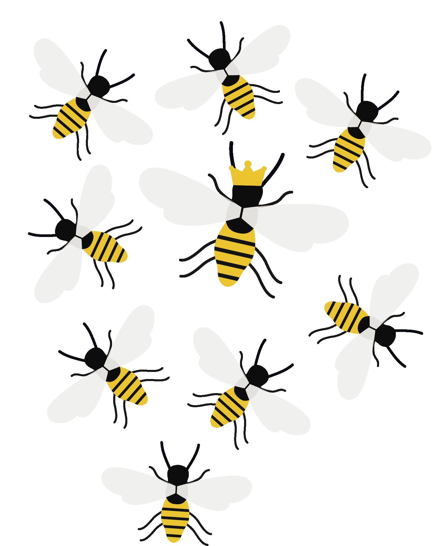 https://www.membership-matters.co.uk/wp-content/uploads/2018/01/Queen-Bee2-1.png